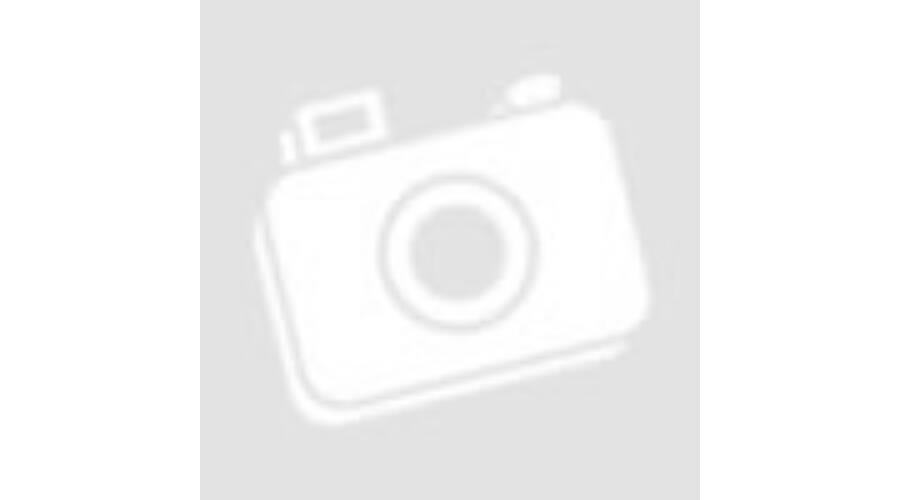 4cc8ab89b4 Kutyaruha -Vastag téli szőrmés USA kutyakabát kapucnival kék színben ...